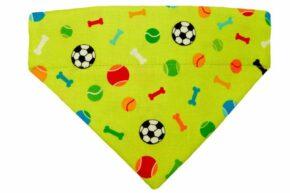 Halsbandtuch-Knochen-Fußball-grün