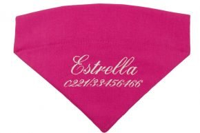 Halsbandtuch-Pink-Name-2