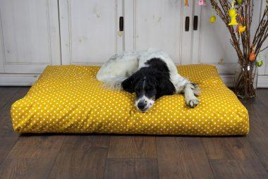 """Hundekissen pfötchenalarm comfort line """"Für alle Pfötchen"""""""
